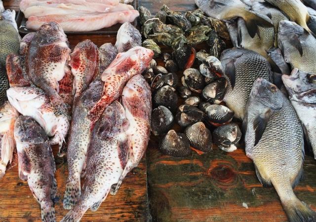 Popotla fishing village Rosarito Baja Mexico