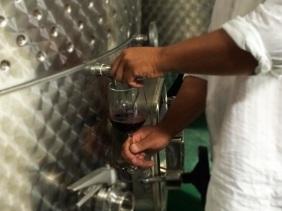 Claudius Winery Baja